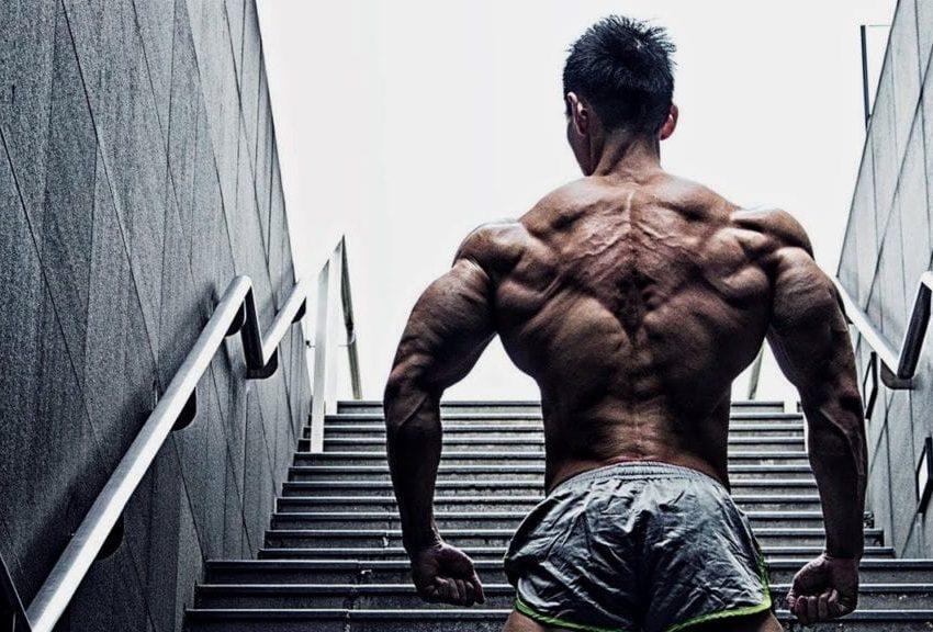 use crazy bulk supplement
