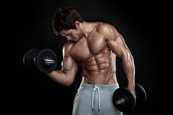 everything about crazy bulk supplement